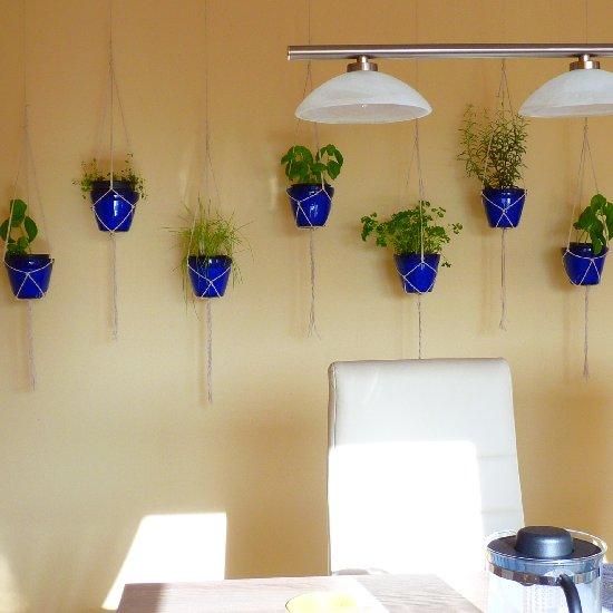 Hanging herb garden indoor bestsciaticatreatments indoor hanging herb garden growing herbs indoors carts for hanging herb garden indoor workwithnaturefo