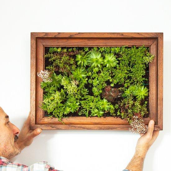 Delicieux ... Make A Vertical Succulent Garden